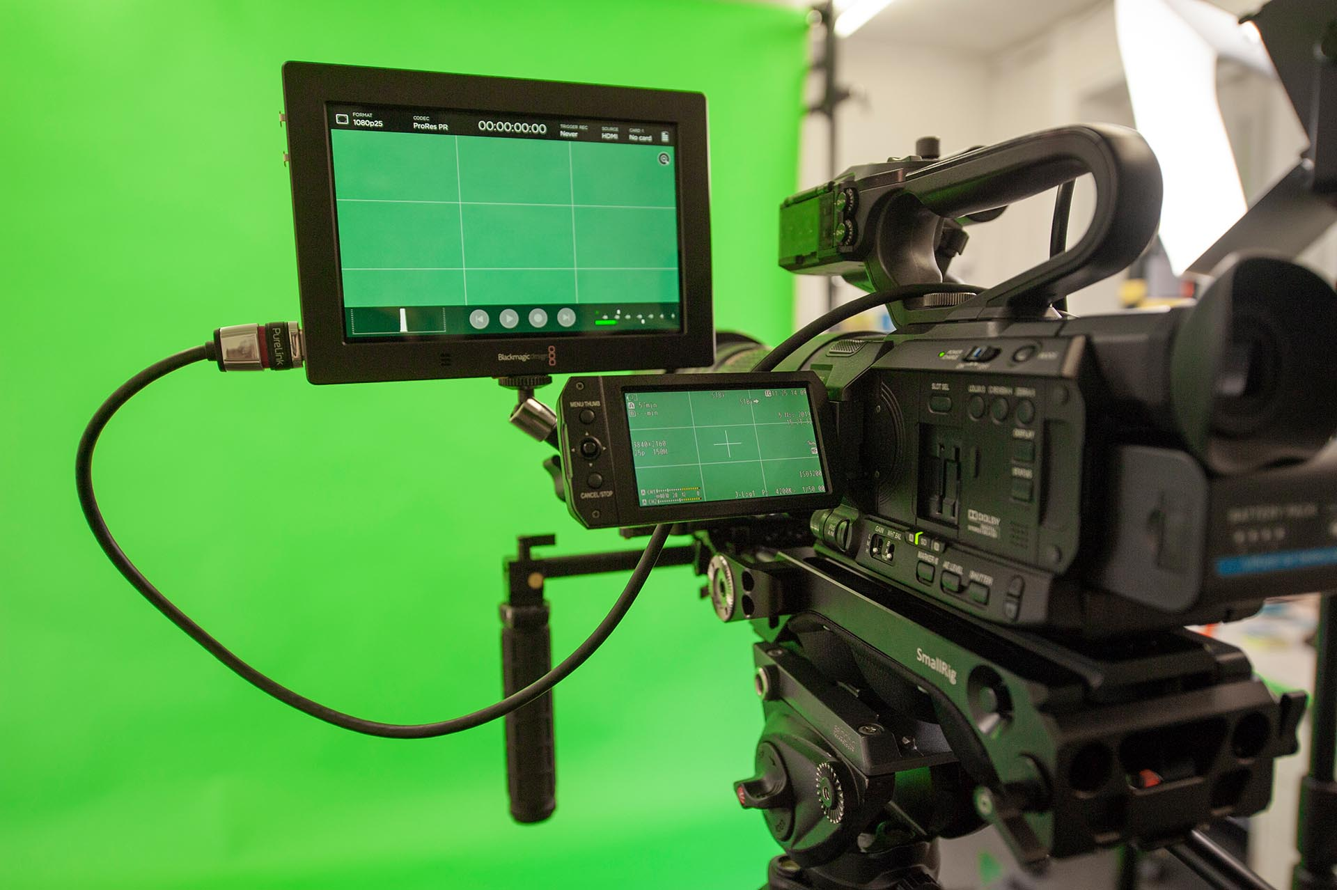 Greenscreen in Daniel Barnbecks Studio in Zürich